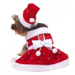 Santa Paws Dress
