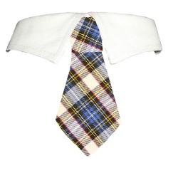 Blake Shirt Collar