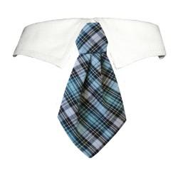 James Shirt Collar