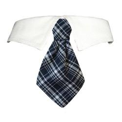 Jayden Shirt Collar