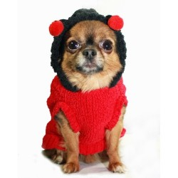 Lady Bug Chenille Hoodie
