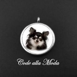 Medaglietta Chihuahua P. Lungo Nero
