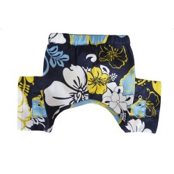Sebastian Swim Trunk