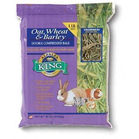 Fieno per piccoli animali - Alfalfa King Oat, Wheat and Barley and Hay