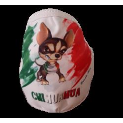 Mascherina Chihuahua Italia