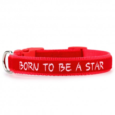 Born to be a star - velluto