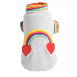 Rainbow Sweatshirt -grey