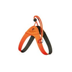Pettorina Basic HF Laccio Arancio