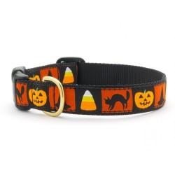Halloween Collar
