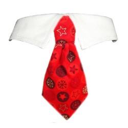 Noel Shirt Collar