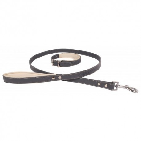 Banbury and Co. Luxury Dog Collar and Lead Set