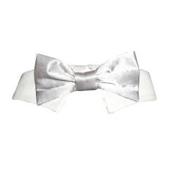 Shirt Collar Silver Satin