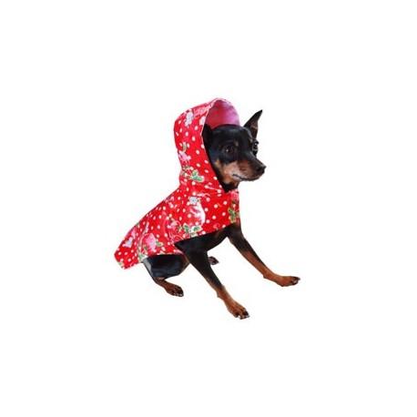 Scarlet Raincoat