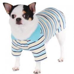 Aaron Polo Shirt