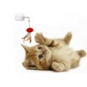 Gatto: Giochi e Tiragraffi