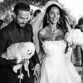 Al matrimonio di Alex Belli e Delia Duran c'era anche Bella, elegantissima col vestitino firmato Trilly tutti Brilli. #alexbelli #deliaduran #matrimonio #wedding #dog #pomeranian #trillytuttibrilli #abitinocane #abitinocerimonia #cane