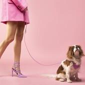BAURDELLE è il marchio che gli amanti dei cani di tutto il mondo non sapevano di aver bisogno. Una collezione irriverente e ironica realizzata con materiali di prima qualità. Questi accessori in pelle trasformeranno il tuo cane in un'icona della moda, l'oggetto del desiderio al parco per cani.✅https://www.codeallamoda.com/338-baurdelle#baurdelle #dog #accessoricane #harnessdog #collarecane #collardog #pelletteriacane #altamoda